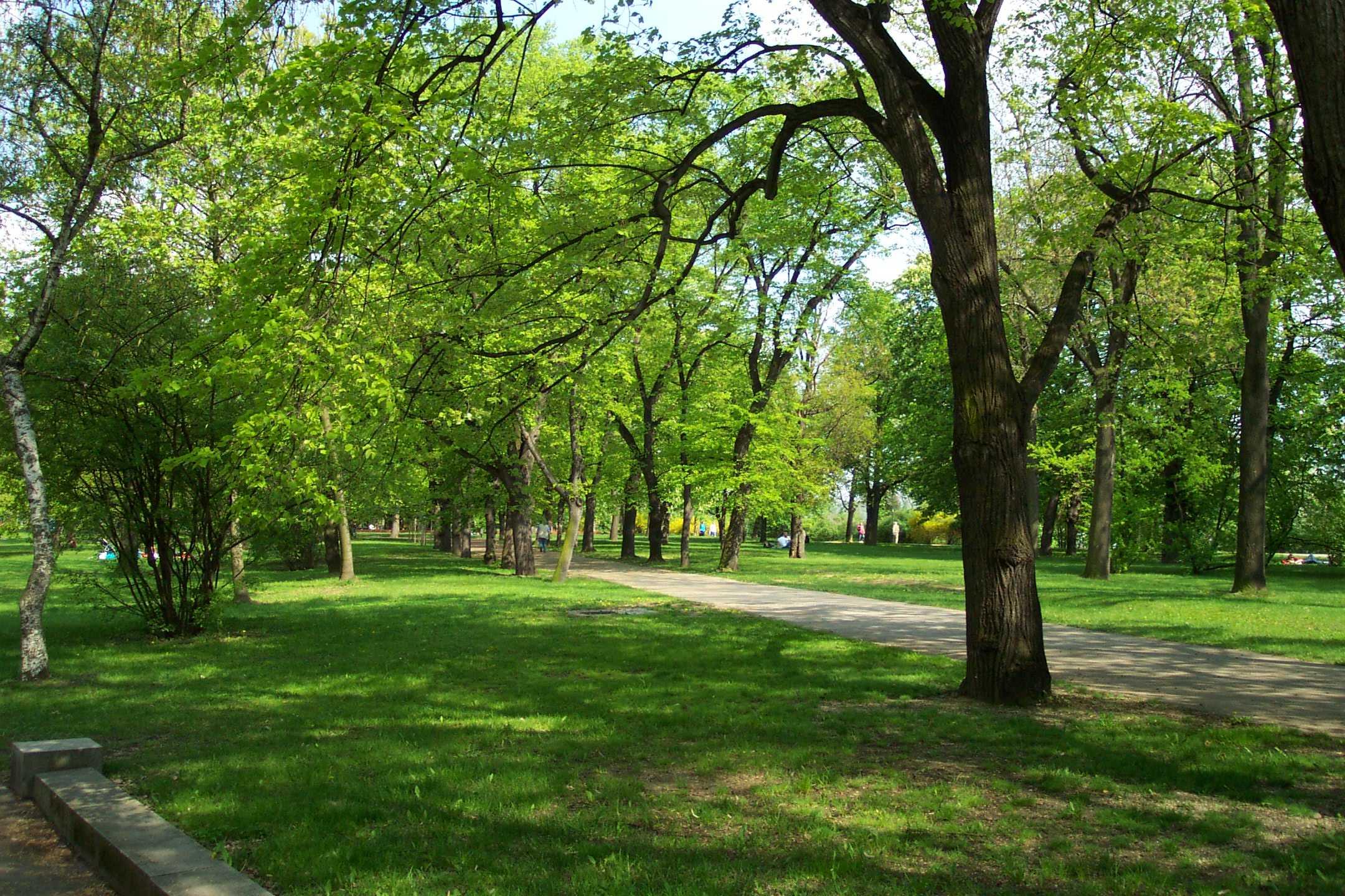 Фотосессия в парке Летна